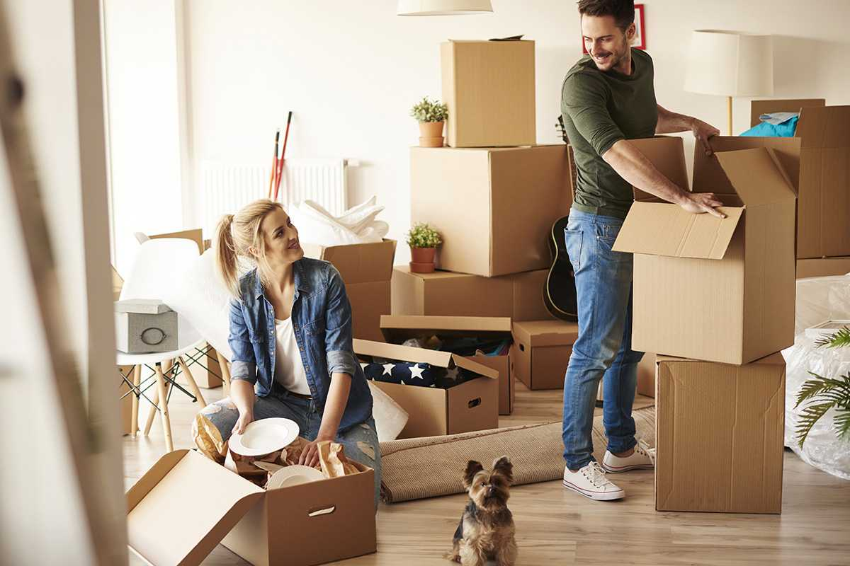 International Relocation Companies in Qatar- Professional Packers and Movers in Qatar